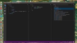 Visual Studio Code (Linux)